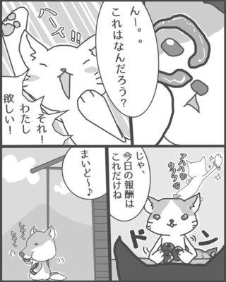 gon_001.jpg